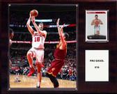 "NBA 12""x15"" Pau Gasol Chicago Bulls Player Plaque"
