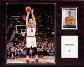 """NBA 12""""x15"""" Kevin Love Cleveland Cavaliers Player Plaque"""