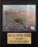"""NCAA Football 12""""x15"""" Ben Hill Griffin Stadium Stadium Plaque"""