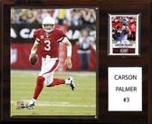 "NFL 12""x15"" Carson Palmer Arizona Cardinals Player Plaque"