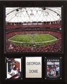 """NFL 12""""x15"""" Georgia Dome Stadium Plaque"""