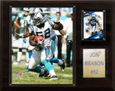 "NFL 12""x15"" Jon Beason Carolina Panthers Player Plaque"