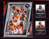 """NFL 12""""x15"""" Denver Broncos 2014 Team Plaque"""