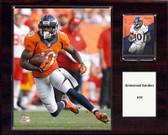 """NFL 12""""x15"""" Emmanuel Sanders Denver Broncos Player Plaque"""