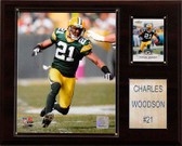 """NFL 12""""x15"""" Charles Woodson Green Bay Packers Player Plaque"""