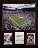 """NFL 12""""x15"""" Reliant Stadium Stadium Plaque"""