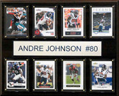 "NFL 12""x15"" Andre Johnson Houston Texans 8-Card Plaque"
