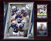 "NFL 12""x15"" Indianapolis Colts 2014 Team Plaque"