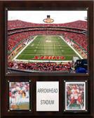 """NFL 12""""x15"""" Arrowhead Stadium Stadium Plaque"""