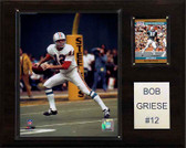 """NFL 12""""x15"""" Bob Griese Miami Dolphins Player Plaque"""