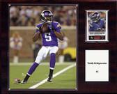 "NFL 12""x15"" Teddy Bridgewater Minnesota Vikings Player Plaque"