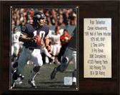 "NFL 12""x15"" Fran Tarkenton Minnesota Vikings Career Stat Plaque"
