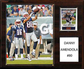 """NFL 12""""x15"""" Danny Amendola New England Patriots Player Plaque"""