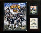 "NFL 12""x15"" New England Patriots Super Bowl XXXVIII Champions Plaque"