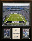 """NFL 12""""x15"""" Meadowlands Stadium Stadium Plaque"""