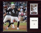 "NFL 12""x15"" David Carr Oakland Raiders Player Plaque"