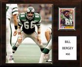 "NFL 12""x15"" Bill Bergey Philadelphia Eagles Player Plaque"