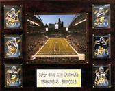NFL 16x20 CenturyLink Field