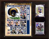 "NFL 12""x15"" St. Louis Rams 2010 Team Plaque"