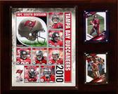"""NFL 12""""x15"""" Tampa Bay Buccaneers 2010 Team Plaque"""