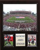 "NFL 12""x15"" Raymond James Stadium Stadium Plaque"