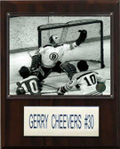 "NHL 12""x15"" Gary Cheevers Boston Bruins Player Plaque"