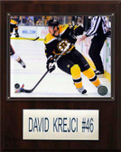 "NHL 12""x15"" David Krejci Boston Bruins Player Plaque"