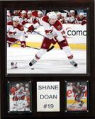 "NHL 12""x15"" Shane Doan Phoenix Coyotes Player Plaque"