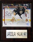 "NHL 12""x15"" Jaroslav Halak St. Louis Blues Player Plaque"