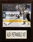 """NHL 12""""x15"""" Alex Pietrangelo St. Louis Blues Player Plaque"""