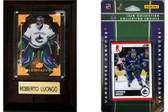 NHL Vancouver Canucks Fan Pack