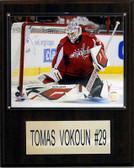 """NHL 12""""x15"""" Tomas Vokoun Washington Capitals Player Plaque"""