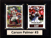 "NFL 6""X8"" Carson Palmer Arizona Cardinals Two Card Plaque"