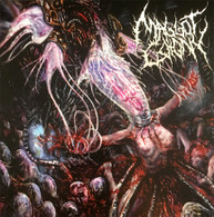 Maggot Colony - Perpetuating the Viral Infestation