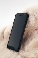 iPhone 8 / 8 Plus