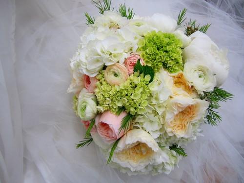 Garden Roses, Hydrangea, U0026 Ranunculus Bouquet