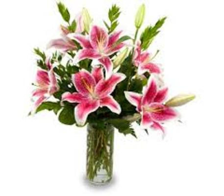 Scented Lilies