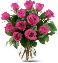Dozen Hot Pink Roses Arranged