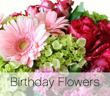 Chappells voted burlingtons choice delivery in 3 hourswe promise birthday flowers category mightylinksfo