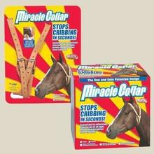 Miracle Cribbing Collar horse