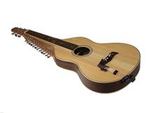 Hindustani style Slide Guitar - Godden Music (GM001)