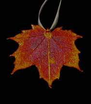 Sugar Maple Leaf Ornament