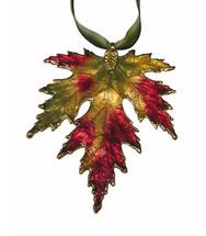 Silver Maple - Fall Multicolor