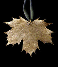 Sugar Maple Leaf Ornament - Gold