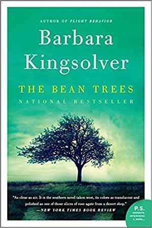 The Bean Trees by Barbara Kingsolver Teacher Guide, Lesson Plans, Novel Unit