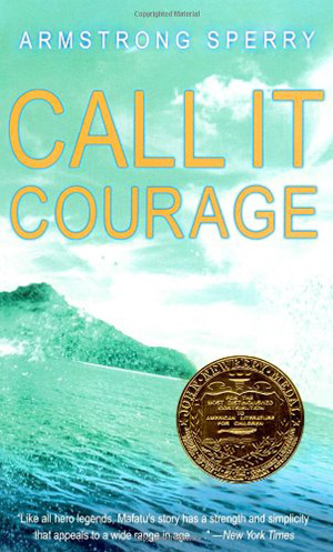 Call It Courage by Armstrong Sperry Teacher Guide, Lesson Plans, Novel Unit, Activities
