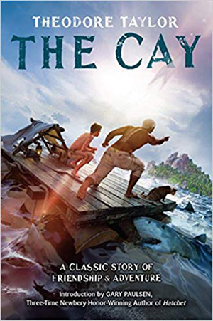 The Cay by Theodore Taylor Teacher Guide, Lesson Plans, Novel Unit