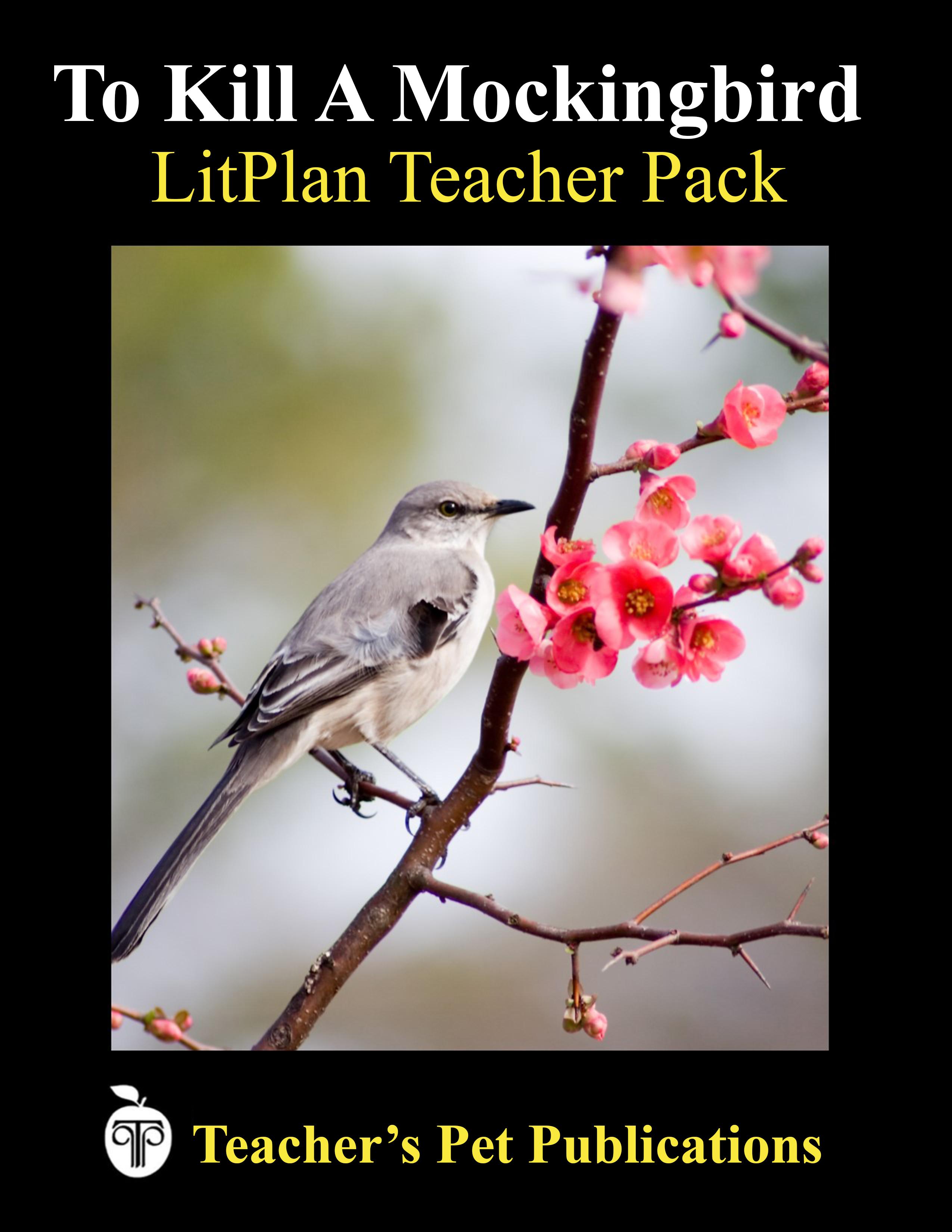 LitPlan Teacher Packs