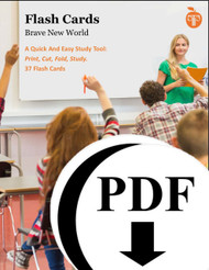Brave New World Study Flash Cards