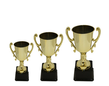 Engraved Trophy Cups